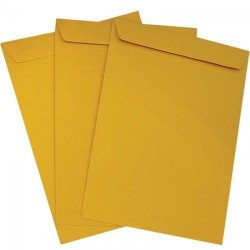 Yellow Envelop 14*10